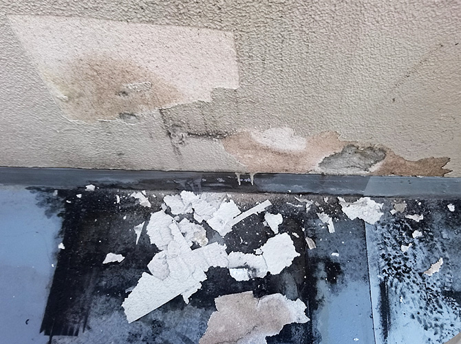 外壁の下地調整